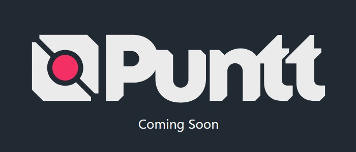 Puntt Review