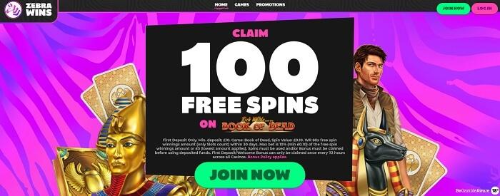 Zebra Wins Casino Review